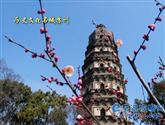 國家歷史文化名城蘇州市(第一批)
