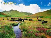 國家歷史文化名城會澤縣(新增)