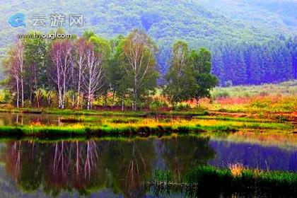 铁西森林公园