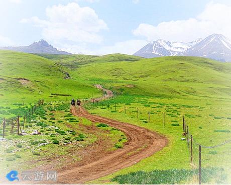 张掖夏天塔拉草原