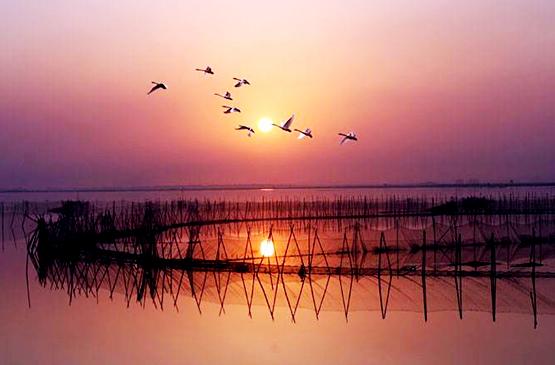 鄱陽湖555.jpg?lvyougl.com